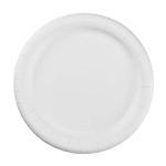 "Coated 9"" Plate - White"